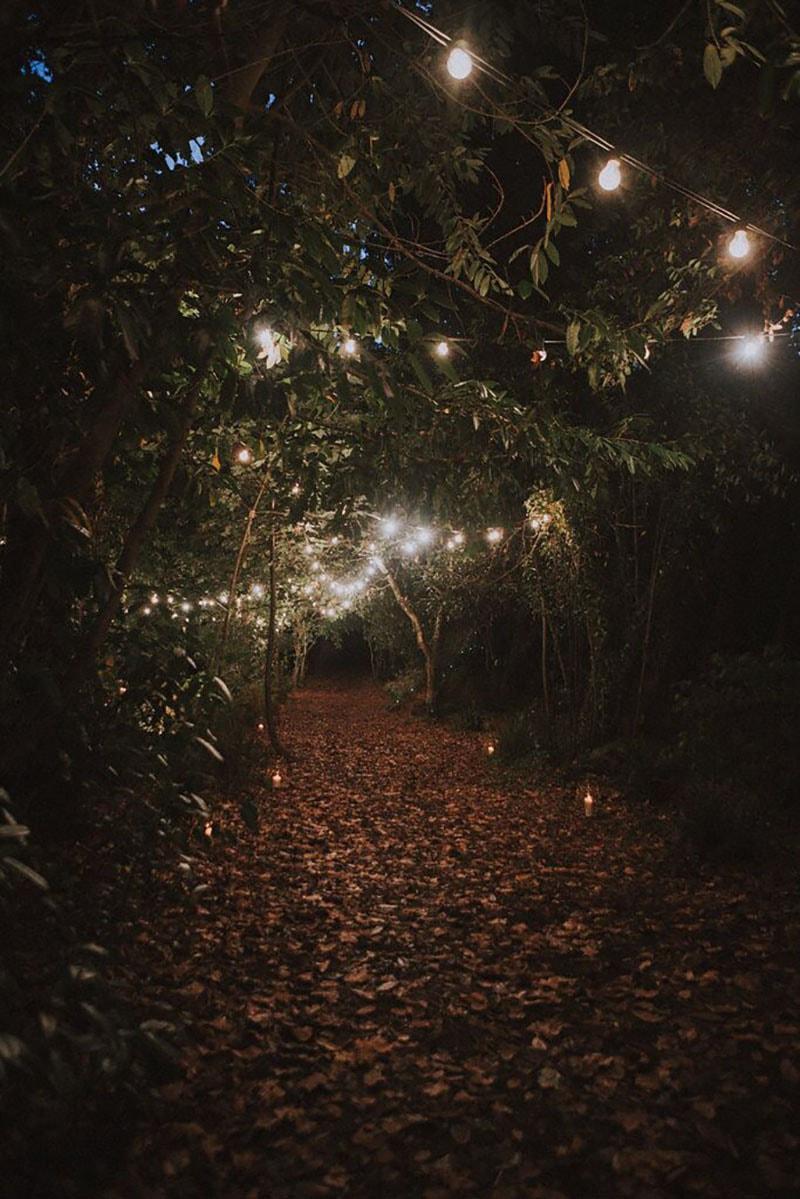 jardín exterior decorado con bombillas en los arboles